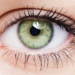 Close up of green eye