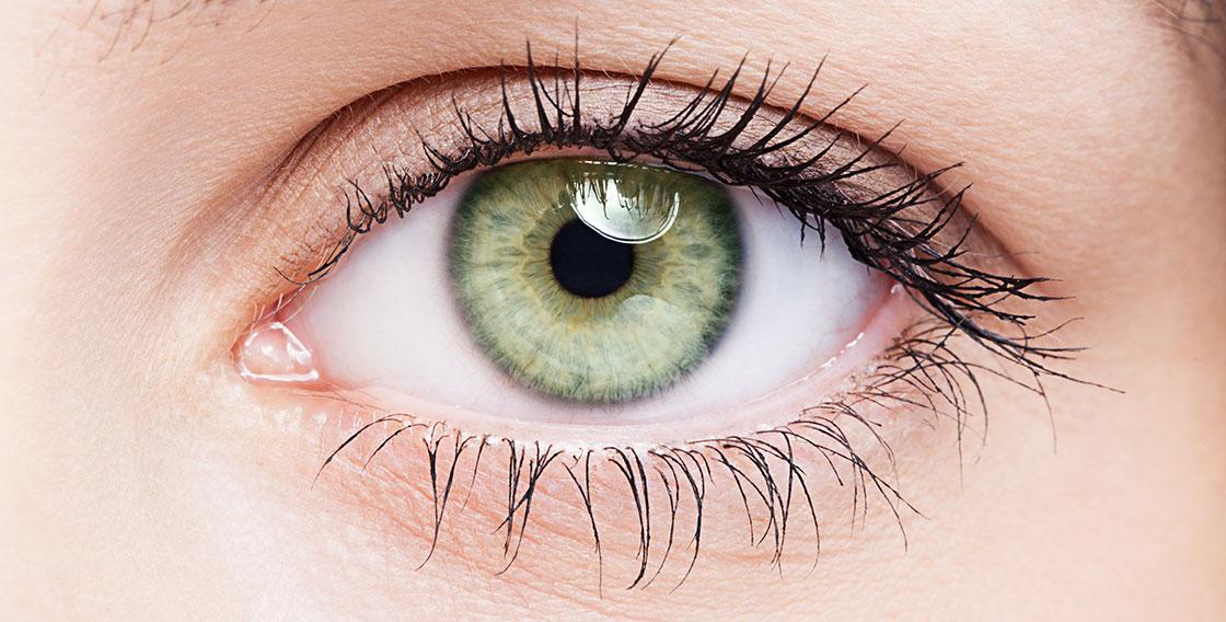Close up of green eye